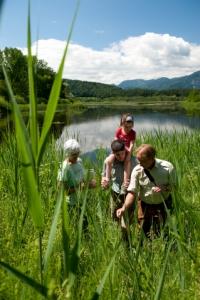 Naturschauspiel im Sablatnigmoor